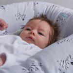 Baby Nest Zebra